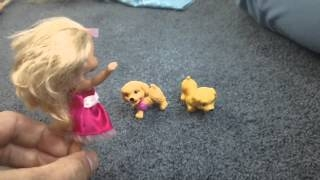 Barbie Ken Puppy Fairy Mariposa all play together Kid Friendly Video ( ( url:www.youtube.com/watch?v=kXjTfbPqcZU | url:www.youtube.com/watch?v=UY9xQG4BohU | url:www.youtube.com/watch?v=d1lwuiISK1I ) |