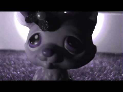 Littlest Pet Shop Version - Love Like Woe [CAUTION: FAST FLASHING LIGHTS]